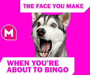 bingo meme - The face you make when you're about to bingo!