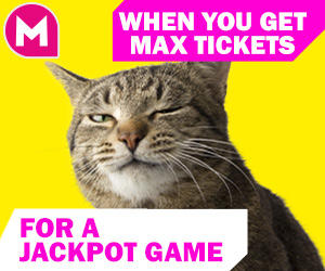 Bingo meme - When you get max tickets for a jackpot game