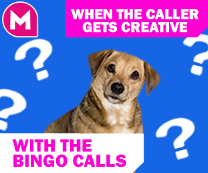 bingo meme -When your host gets creative with the calls