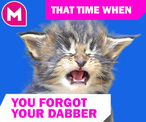 bingo meme - That time when you forgot your dabber
